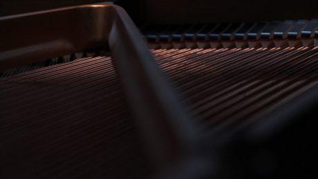 grand-piano-strings-craig-seidl